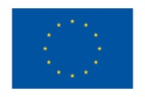 European Union Flag Prints by  duallogic