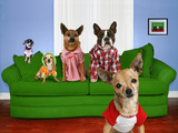 Funny Dog Card Prints by  graphicphoto