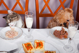 Banquet For The Animals Photographic Print by  Okssi