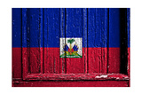 Haiti Prints by  budastock