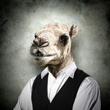 Portrait Of A Funny Camel In A Business Suit On A Gray Background. Collage Photo by Sergey Nivens