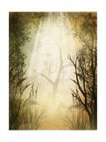 Bosque Láminas por  justdd
