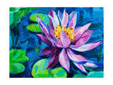 Water Lily Prints by Boyan Dimitrov