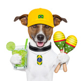 Funny Dog Brazil Prints by Javier Brosch