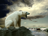 White Polar Bear Hunter On The Ice In Water Drops Posters by  yuran-78