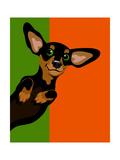 Illustration Of A Happy Playful Dachchund Plakat af TeddyandMia