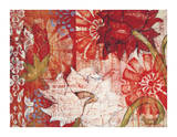 Crimson Malay II Giclee Print by Kate Birch