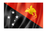 Papua New Guinea Flag Print by  daboost
