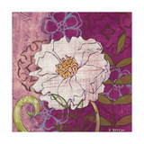 White Peony Giclee Print by Kate Birch