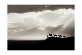 Bw Desert Background Prints by  sliper84