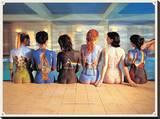 Pink Floyd Back Catalogue, LP-hoezen afgebeeld op de rug van 6 vrouwen Kunstdruk op gespannen doek