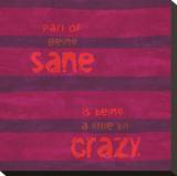 Sane Crazy Stretched Canvas Print by Janis Boehm