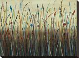 Reed Garden Stretched Canvas Print by James Brooks