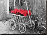 Poinsettia Wagon Stretched Canvas Print by Lillian Yao
