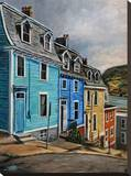 St. John's Newfoundland Houses Stretched Canvas Print by Marc Little
