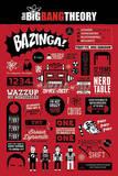 The Big Bang Theory Infographic Fotky
