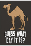 Guess What Day it Is Humor Plastic Sign Plastic Sign