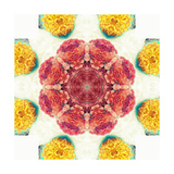 Orange Brown Blossom Mandala Posters por Alaya Gadeh