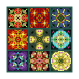 Mandala Collection No 2 Photographic Print by Alaya Gadeh