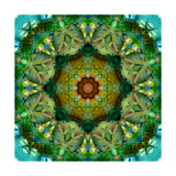 Mandala Alltime Favourite Photographic Print by Alaya Gadeh