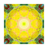 Energy Of The Sun Mandala Photographic Print by Alaya Gadeh