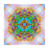 Flower and Fruit Mandala II Photographic Print by Alaya Gadeh