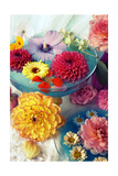 Lovely Table Blossoms III Prints by Alaya Gadeh