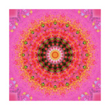 Taste Of Raspberry Mandala Photographic Print by Alaya Gadeh
