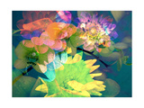 Shiny Multi Flow Photographic Print by Alaya Gadeh