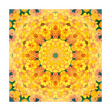 Yellow Orange Buttercup Mandala Photographic Print by Alaya Gadeh