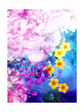 Multicolored Summer Dreams Photographic Print by Alaya Gadeh