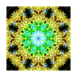 Energetic Mandala Ornament Photographic Print by Alaya Gadeh
