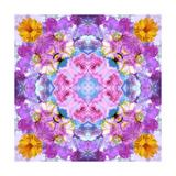 Purple Mandala Posters por Alaya Gadeh