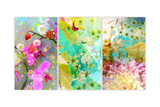 Floral Tryptich N0 5 Photographic Print by Alaya Gadeh