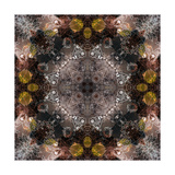 Flower Mandala Ornament Photographic Print by Alaya Gadeh