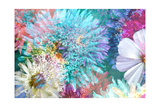 autumn Flower Mix I Photographic Print by Alaya Gadeh