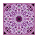Purple Lace Mandala Photographic Print by Alaya Gadeh