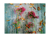 The Beauty Of The Wild Flowers Photographic Print by Alaya Gadeh
