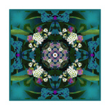 Temple Of Water Mandala VIII Photographic Print by Alaya Gadeh