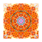 Orange Blossom Mandala Print by Alaya Gadeh