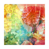 In The World Of Dahlia Photographic Print by Alaya Gadeh
