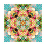 Rose Mandala VI Photographic Print by Alaya Gadeh