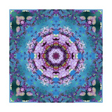 Temple Of Water Mandala XI Photographic Print by Alaya Gadeh