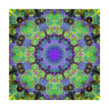 Water and Earth Mandala Green Photographic Print by Alaya Gadeh