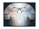 Liberty VI Photographic Print by Alaya Gadeh