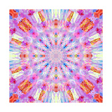 Sunny Rhasperry Kaleidoscope Photographic Print by Alaya Gadeh