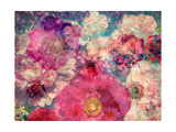 Flowers 4 Photographic Print by Alaya Gadeh