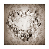 Heart Of Seashells I Photographic Print by Alaya Gadeh
