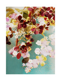 Floral Compositions I Photographic Print by Alaya Gadeh