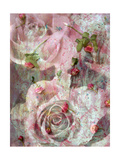 Roses and Roses II Photographic Print by Alaya Gadeh